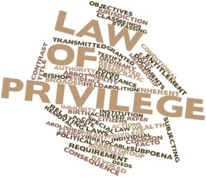 17141896 - abstract word cloud for law of privilege with related tags and terms